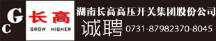 湖南长高电气有限公司