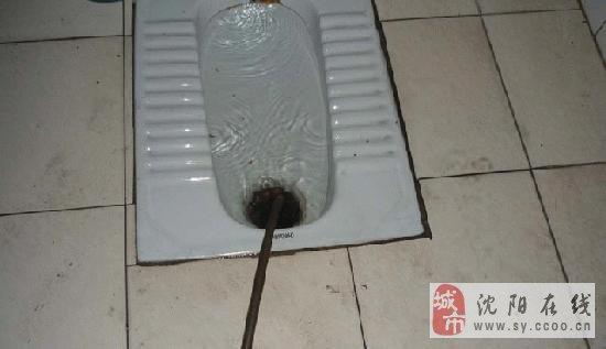 和平沈河区专业通下水马桶疏通 疏通蹲坑/地漏/菜池