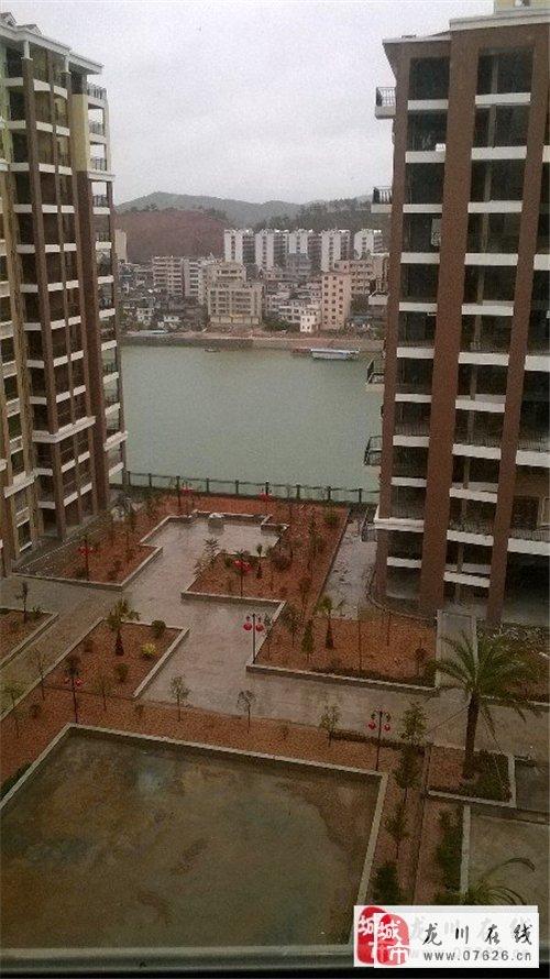 龙川泰华城图片