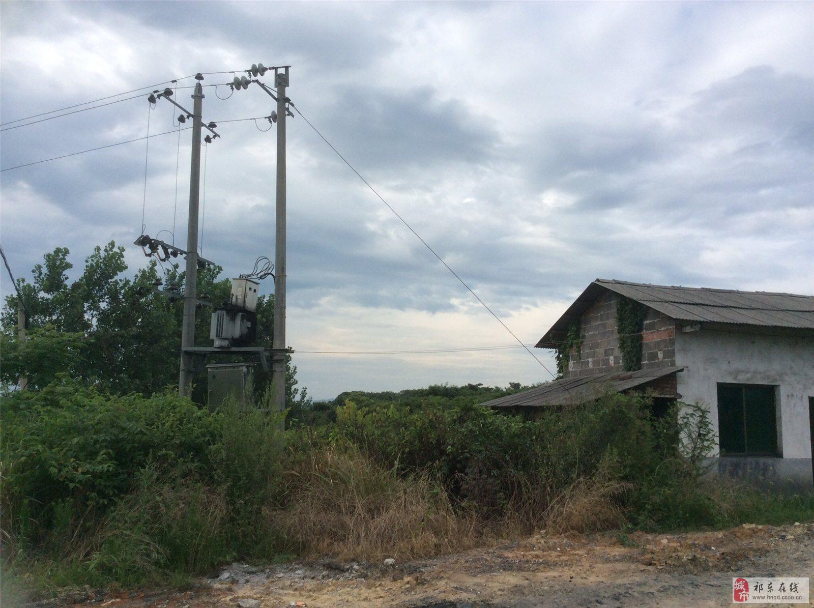 白地市煤场转让