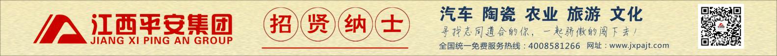 江西平安集团