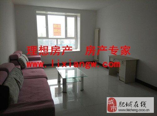 新房未入住中装修有简单家具房子三室两厅两室朝阳房子价格便宜