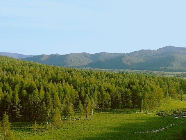 自驾总结 | 阿荣旗库伦沟的原生态之旅!