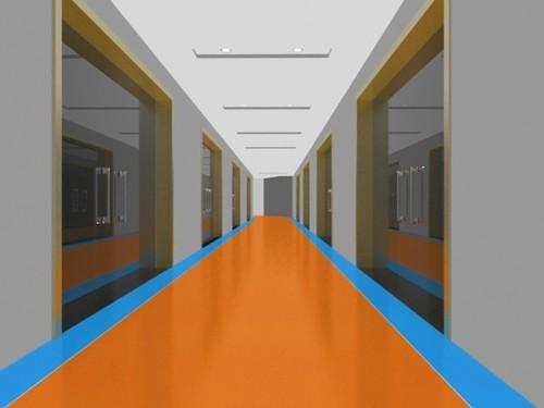 泰安金燧阳光专业塑胶地板工程案例