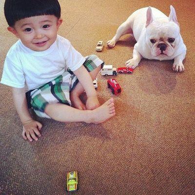 萌娃与动物头像
