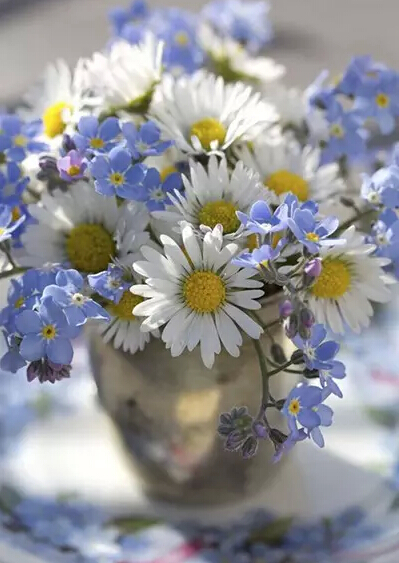 婚礼布置用什么花 婚礼常用鲜花及花语