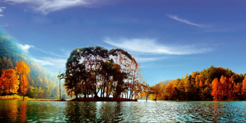 001红叶森林公园图片