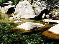 15昆嵛山国家森林公园