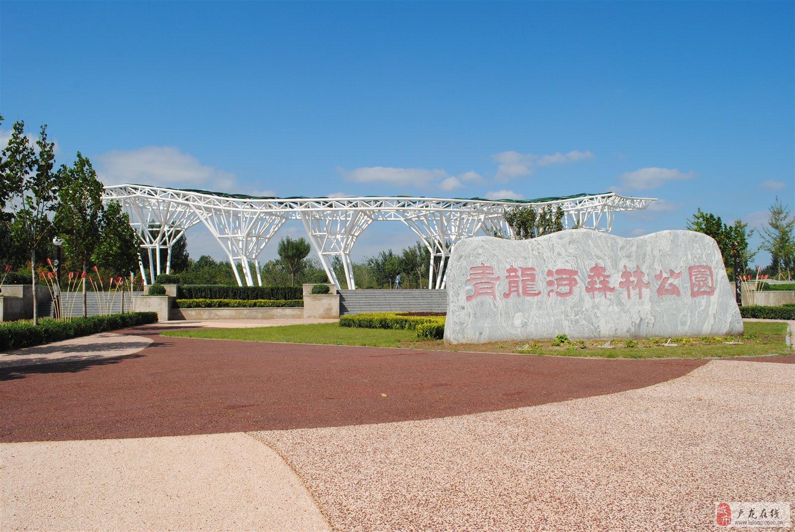 2102青龙河公园美景 禾苗
