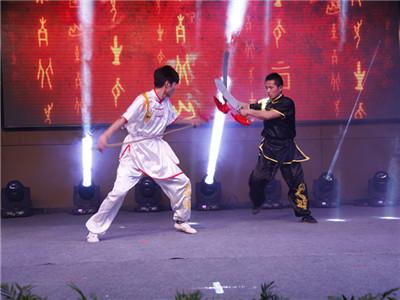10功夫展示《武术、跆拳道》