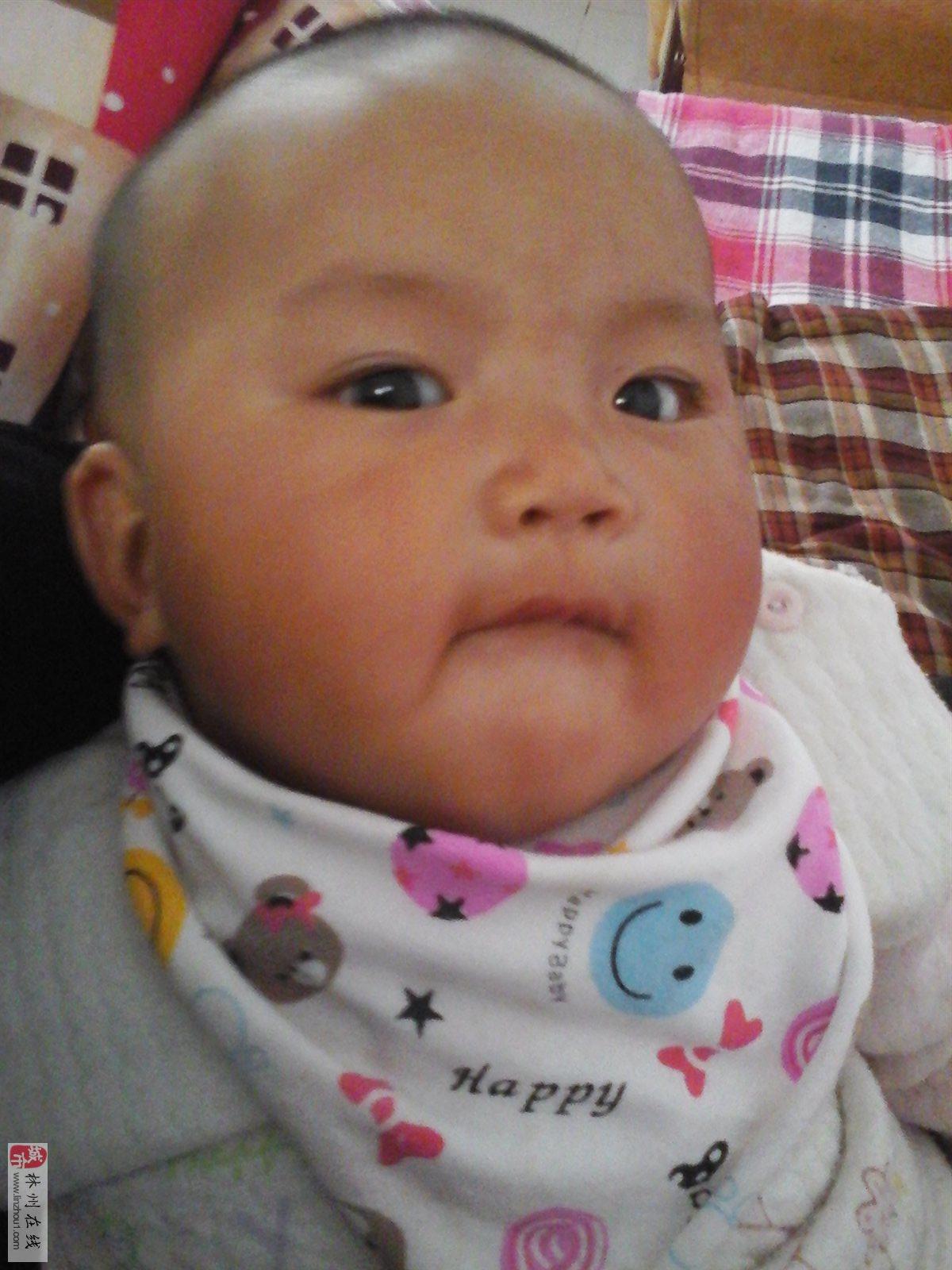 """刘怡慧_林州""""可爱宝宝""""第三期网络评选开始了_林州在线"""