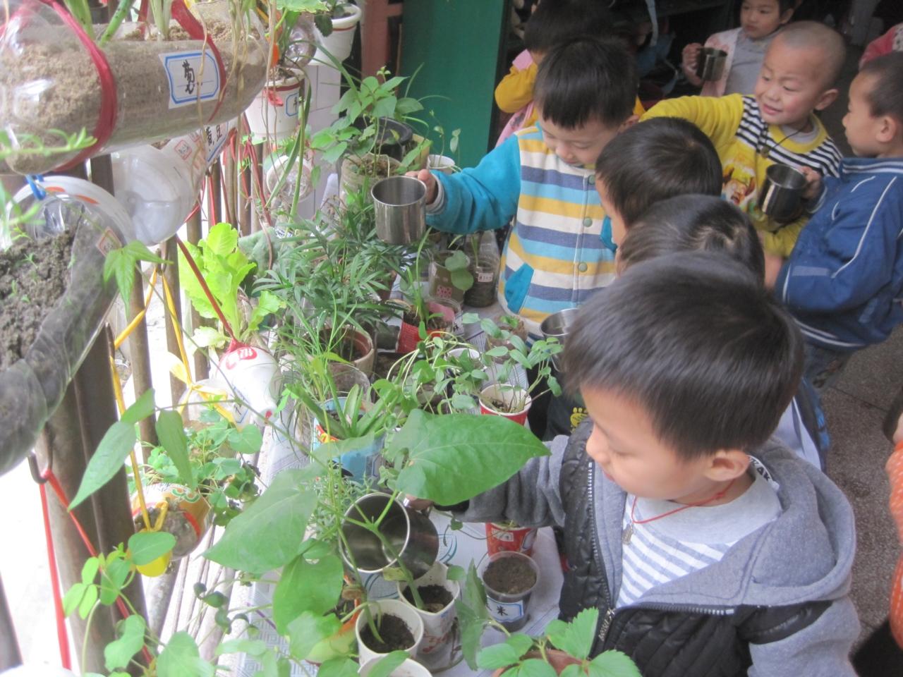 在幼儿园的日常环境布置中,植物角是不可缺少的;精心摆设的植物角对幼儿的身心发育都是很有益处的。让幼儿动手参与布置,不仅能激发幼儿兴趣,培养动手能力,更重要的是增进对环境的认识,懂得保护环境,萌发创造美好环境的意识。   对小班的孩子,我们主要布置一些容易辨认的、在日常生活中常见到的瓜果蔬菜;可以让幼儿了解植物的生长过程,逐步学会观察,了解阳光、水在植物生长过程中的作用;学会护理植物,如定时给植物浇水等等。