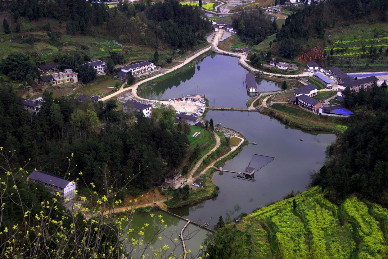 凤冈县旅游局