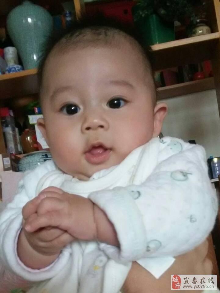 宝宝 壁纸 孩子 小孩 婴儿 721_960 竖版 竖屏 手机