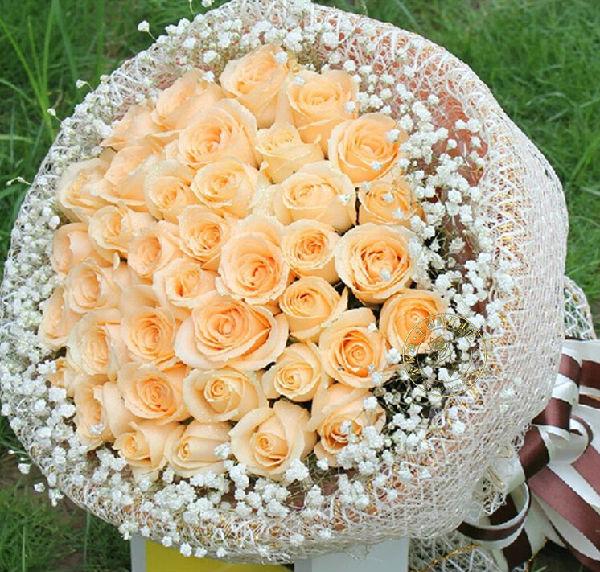 康之园 一支香槟玫瑰花图片 > 玫瑰花吉他装饰画图片素材  玫瑰花吉他