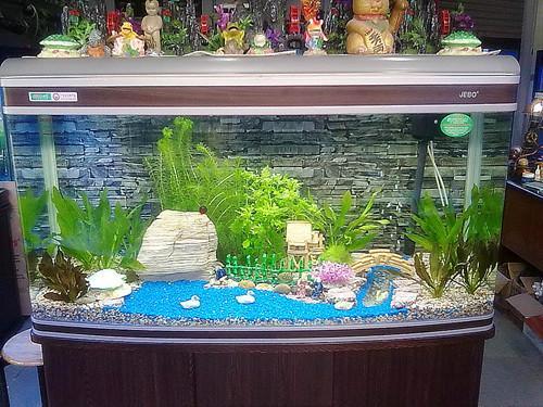 水景鱼缸设计实景图